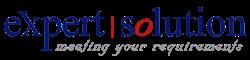 Expert Solution logo